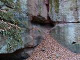 Erosion im Schnittlinger Loch bei Fünfbronn/Spalt
