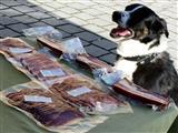 Bitte Verpackung öffnen-gut erzogener Hund am Wochenmarkt in Gunzenhausen