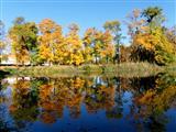 Triesdorf Goldener Oktober
