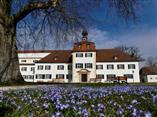 Triesdorf Weißes Schloss mit Blausternchen