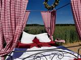 Das Bett im Kornfeld