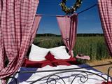 Das Bett im Kornfeld