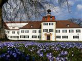 Weisses Schloss Triesdorf mit Blausternchen