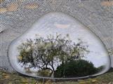Gartenteichbaum