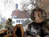 Weißes Schloss in Triesdorf hinter Baumruinen