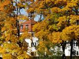 Triesdorf Herbst am Weißen Schloss