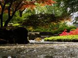 Japangarten Augsburg