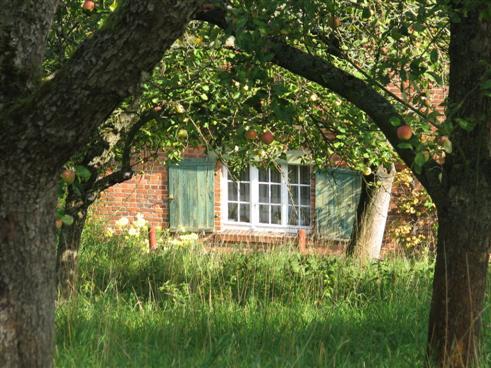 Haus auf der Obstwiese