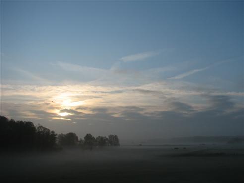 Morgens an der Elbe