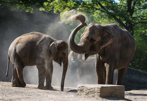 Besuch im Tierpark Hagenbeck