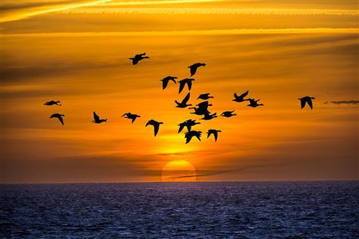Sonnenaufgang Helgoland