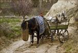 Tuerkischer Bauer bei der Feldarbeit