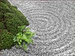 ...ein kleines Stückchen ZEN-Garten
