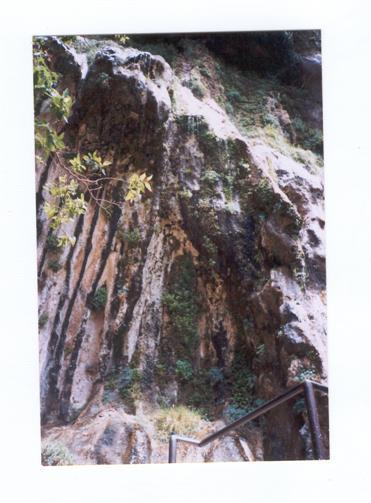 Weeping Rock (Weinender Fels)