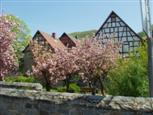 Frühling an der Bergstrasse