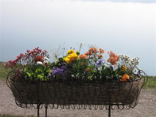 Frühling am Starnberger See