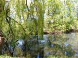 Wilder Nordpark Gladbeck, NRW