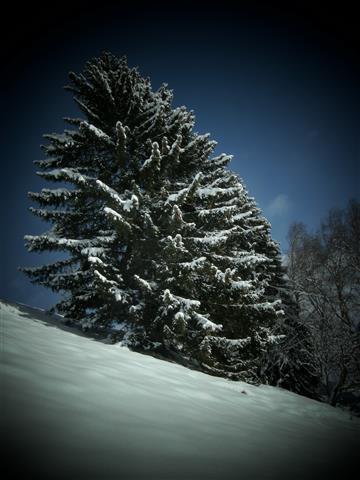 Winterwandern Salzachtal 2