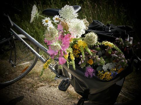Ausnahme zum Geburtstag: Feldblumenstrauß