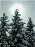 Winterwandern Salzachtal