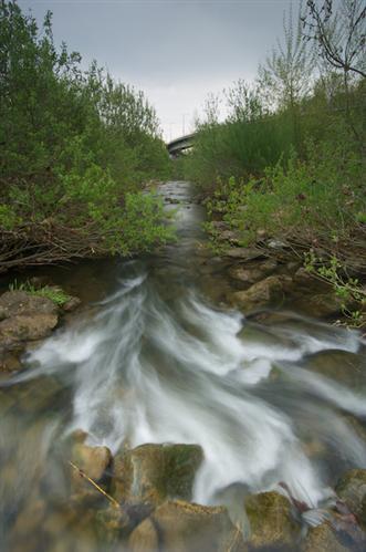 Natur aus zweiter Hand - Der Fluss der durch Wien fliesst - Der Wienfluss