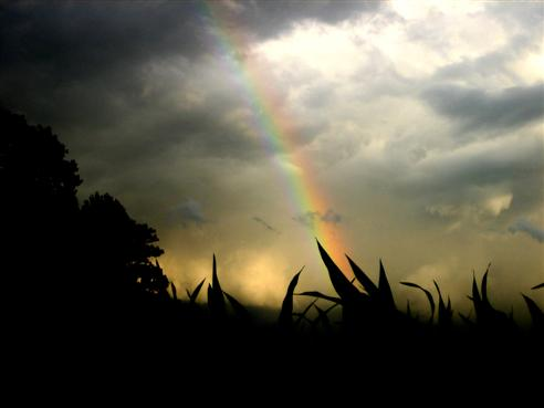 choatischer Himmel mit Regenbogen