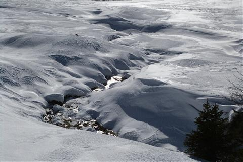 (Wind-)Spuren im Schnee