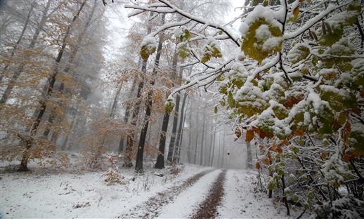 Winter im Herbst
