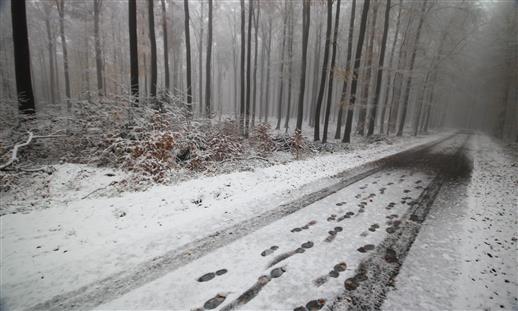 Auf dem Weg Richtung Winter