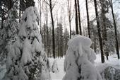 Wintermorgen 3