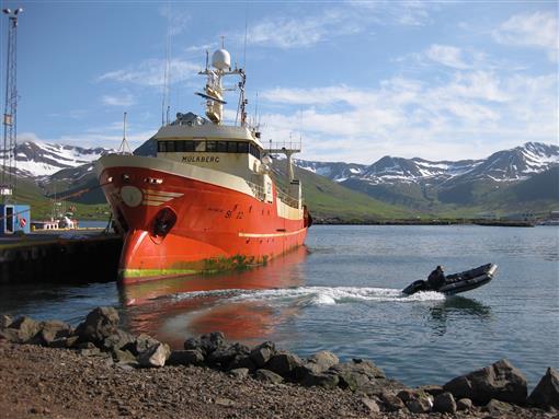 Fischerboote im Hafen von Siglufjördur