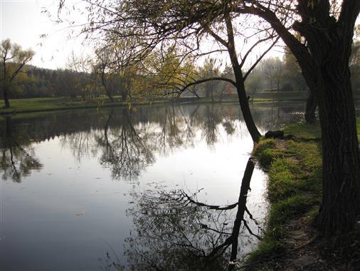 Botanischer Garten Chisinau
