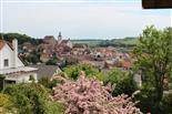 Frühling in Arnstein