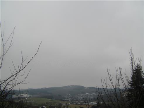 Bild eines Singvogelschwarmes über Eiershausen