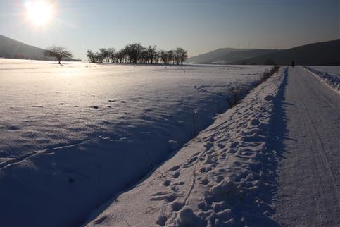 Sonnenschein über einer Schneefläche