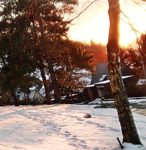 Nachmittagsonne auf der Schneefläche der Gemeindewiese
