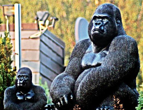 Gorilla-Statuen in einem Garten in Roth