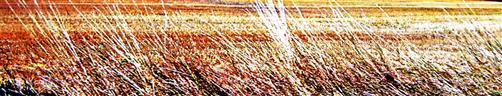Abgeerntete (Getreide-)Felder (nord-)westlich von Caldern