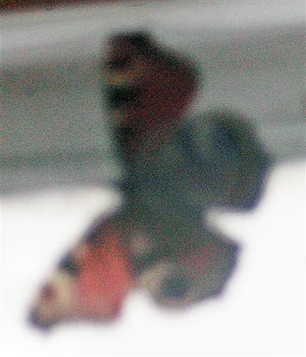 Ein weiterer Gast zur Überwinterung - ein Tagpfauenauge(Aglais io(L. 1758))