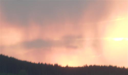 Regenschleier vor Abendsonne