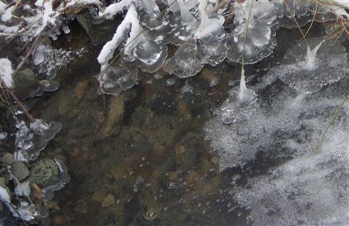 Eisbildung im Schwarzbach