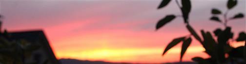 Abendsonne im Diezhöltztal