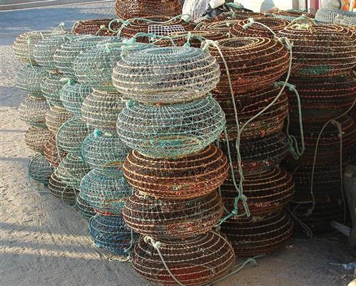 Fischreusen