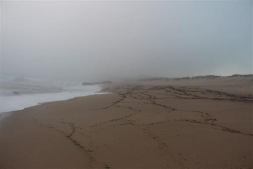Strand und Gischt