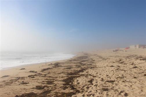 Strand mit Gischt 1