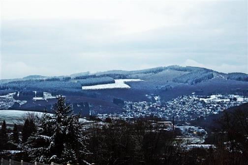 Schneereste auch auf dem Eibertshain Januar 2018