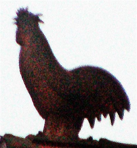Hahn(Gockel) als Figur auf dem Dachfirst (Marburg)