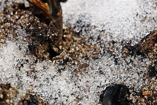 Schmelzende Eiskristalle