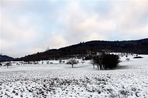 Bruderkopf(Gewänn) aus westlicher Sicht