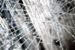 Spinnennetz mit Raureif 1